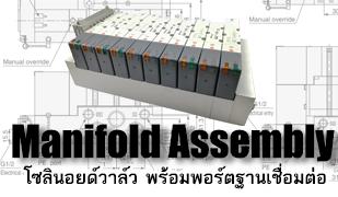 Maniflod Assembly_โซลินอยด์วาล์ว พร้อมฐาน