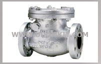 KITZ CHECK VALVE CAST CARBON